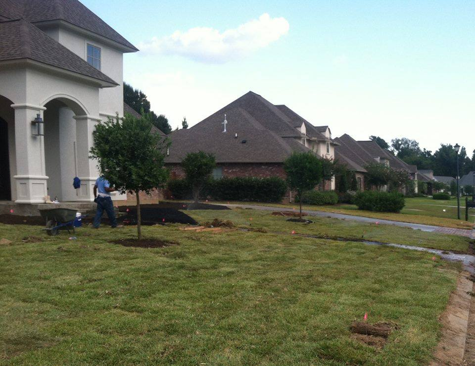 yard grading Belle Chasse a city near New Orleans